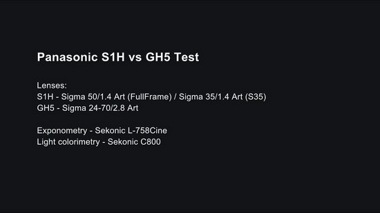 Panasonic S1H vs GH5
