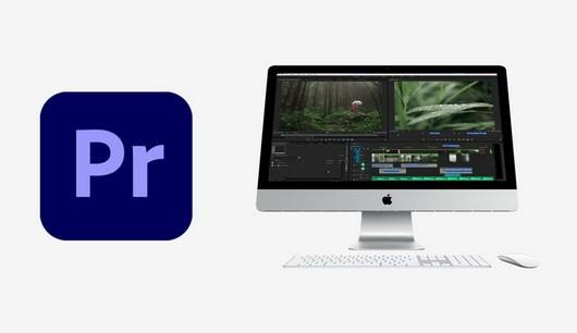 premiere pro вместе с MacOS